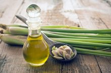 Tinh dầu sả là gì? Cách dùng và tác dụng của tinh dầu sả